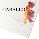 CABALLO 160x160px